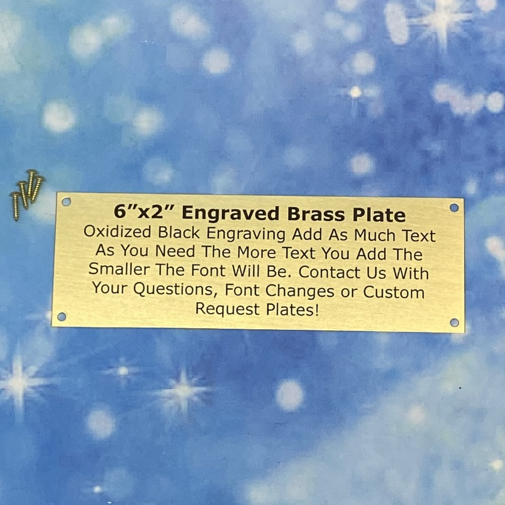 "2""x6"" Brass Metal Plate with Screws"